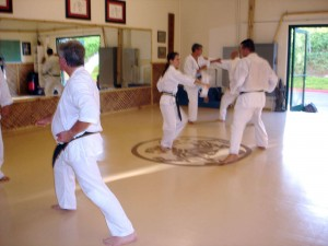 Practice at Lake Forest Shotokan Karate