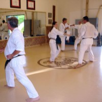 a typical practice at Lake Forest Shotokan Karate Dojo
